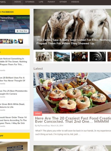 2016 Top Magazine WordPress Theme